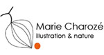 Marie Charozé Illustration & Nature