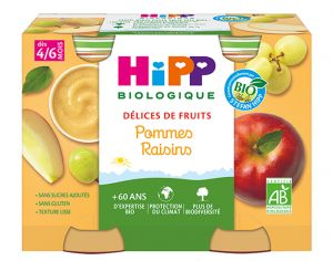 HIPP Délices de Fruits - 2 x 190g