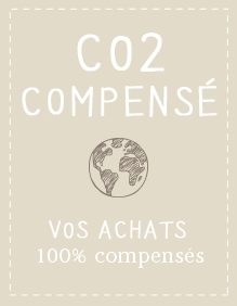 Mini MEA Co2 Compnsé